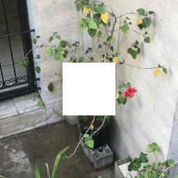 pix2pix_model/beton_test/images/IMG_0791 (1)-inputs.png