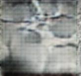 Visual Reconstructions/cropped/Screen Shot 2020-01-09 at 8.09.17 PM.png