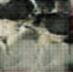 Visual Reconstructions/cropped/Screen Shot 2020-01-09 at 8.17.21 PM.png