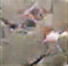 Visual Reconstructions/cropped/Screen Shot 2020-06-16 at 3.32.48 PM.png